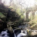healeydellwaterfall