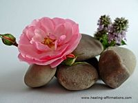 meditation zen stones and pink rose