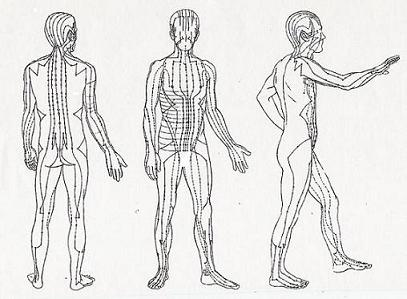 Acupuncture Meridians Pathways of Chi Energy