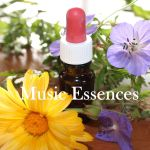 Music (Sound) Essences
