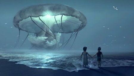 fantasy beach jelly fish