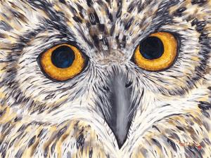 Hootie - Great Horned Owl