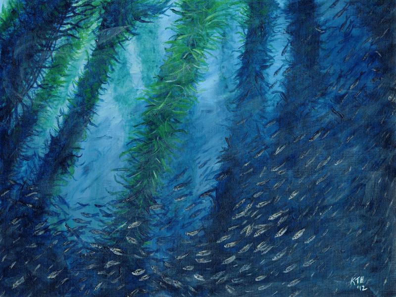 Jack Mackerel Amongst the Kelp painting