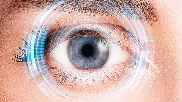Which Eyes Parts Are Associated With Which Eye Diseases?