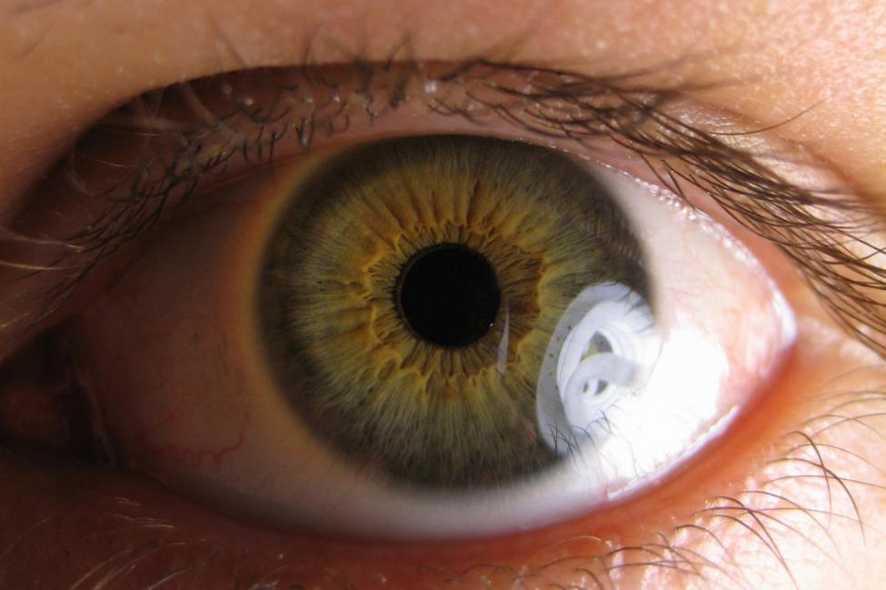Must-Know Facts About Glaucoma | Symptoms | Treatments | Cure