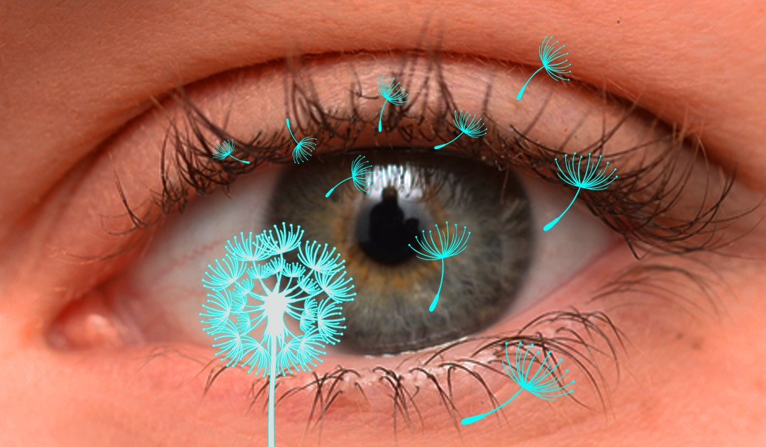 How to protect your eyes from Allergies?