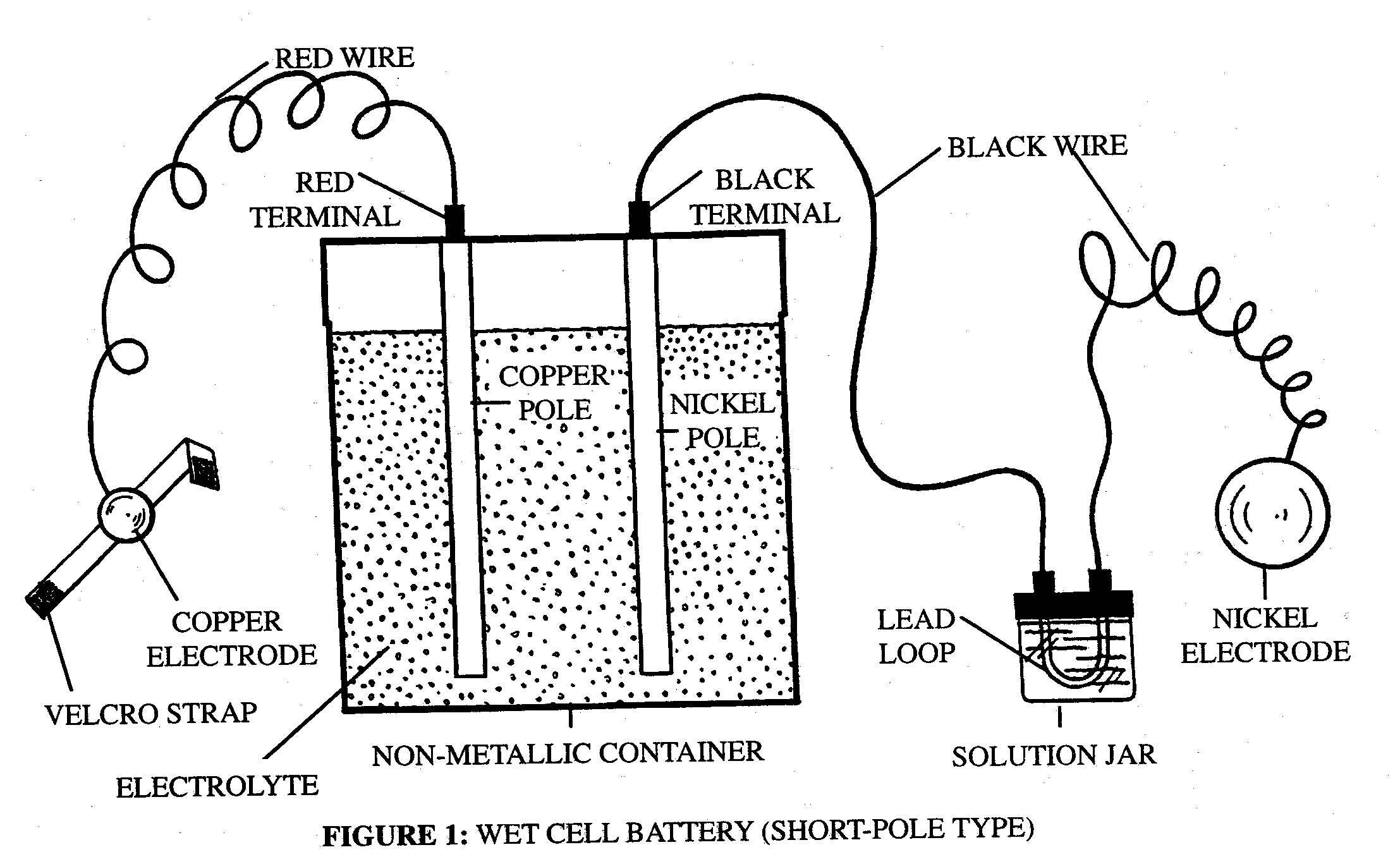 Journey to the World of Science: Wet cell battery