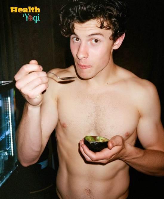 Shawn Mendes Diet Plan