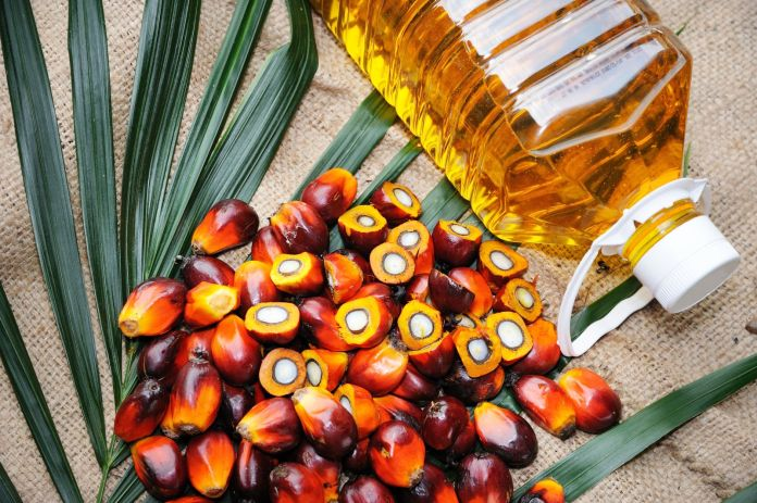 By the way, doctor: Is palm oil good for you? - Harvard Health