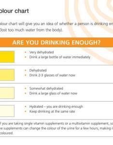 This urine colour chart will give you an idea of whether  person is drinking enough also beat the heat rh health nsw