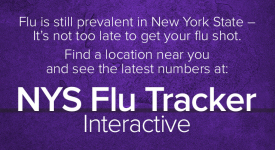 What You Should Know About the Flu (Influenza)