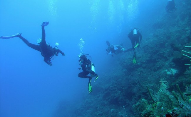 Part 3 Break Into Scuba Diving This Spring Health