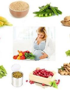 Pregnancy diet chart also rh healthbeautytips