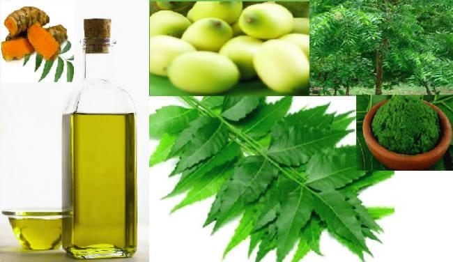 नीम के / neem benefits & remedies in hindi