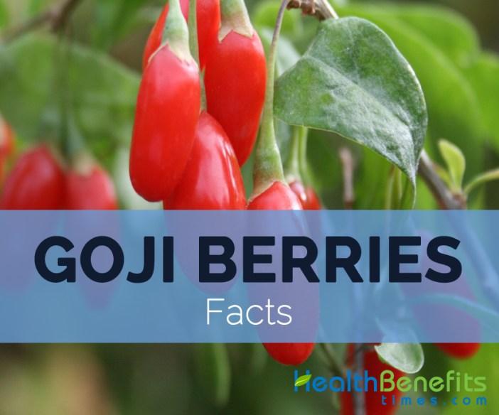 Goji-berries-facts