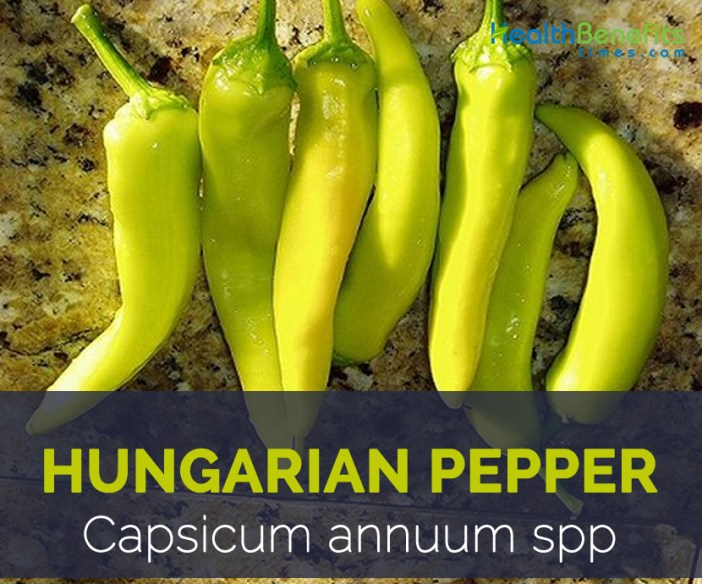 Hungarian Pepper facts and health benefits