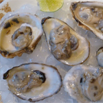 Blue Point Oysters