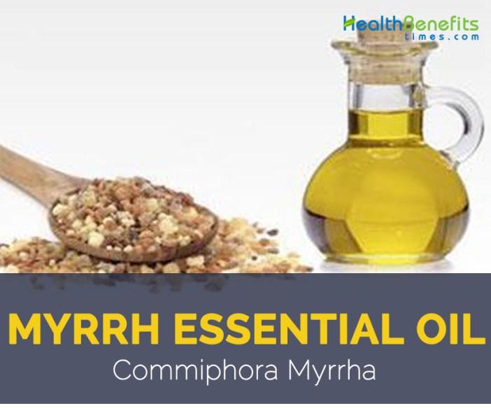 Myrrh essential oil facts and benefits