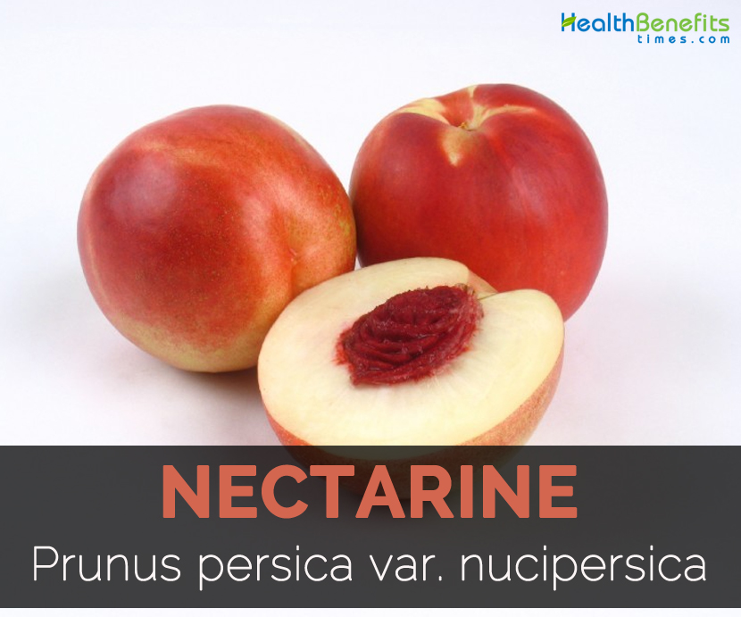 what is the nutritional value of nectarines