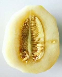 honey-melon-healthy-breathing-250x310