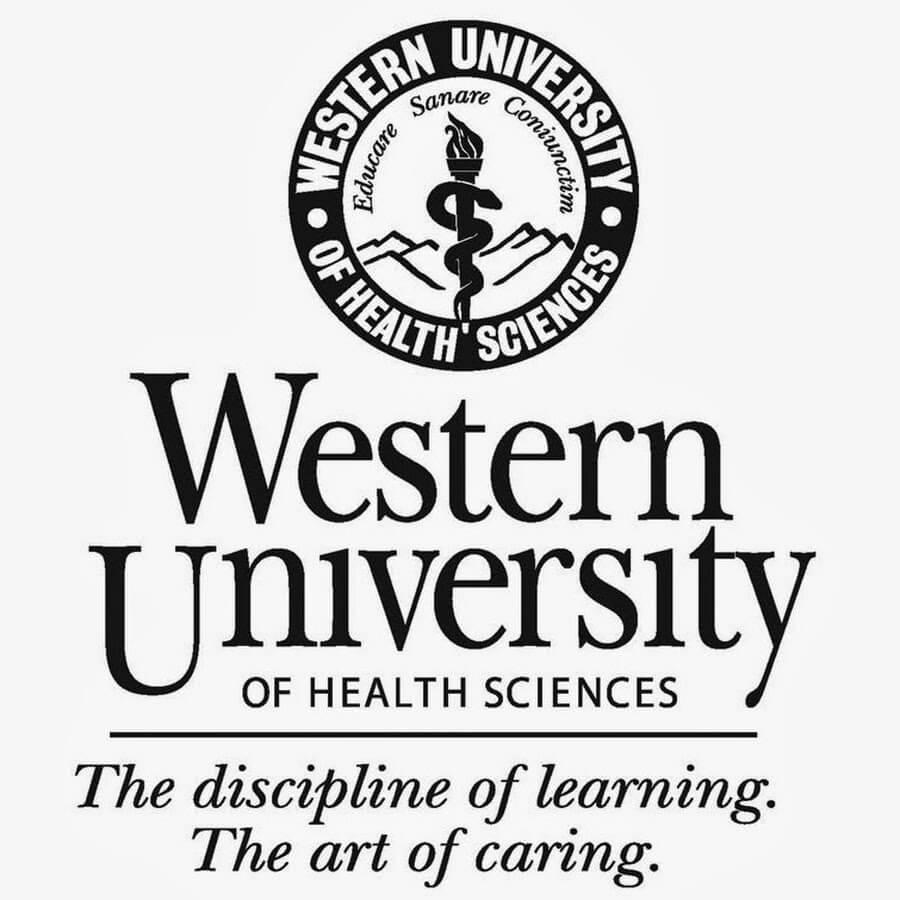 Top 50 Clinical Nurse Leadership Degree Programs 2018-2019