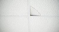 Regulations, Codes & Standards Q&A: Missing ceiling tiles ...