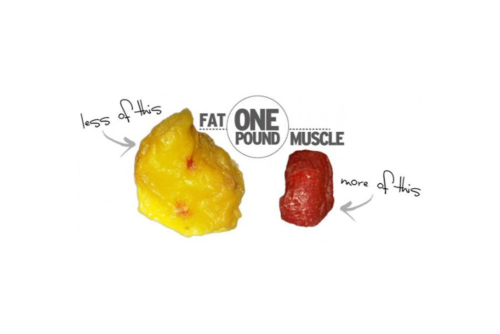Weight Loss or Fat Loss What's the Difference?
