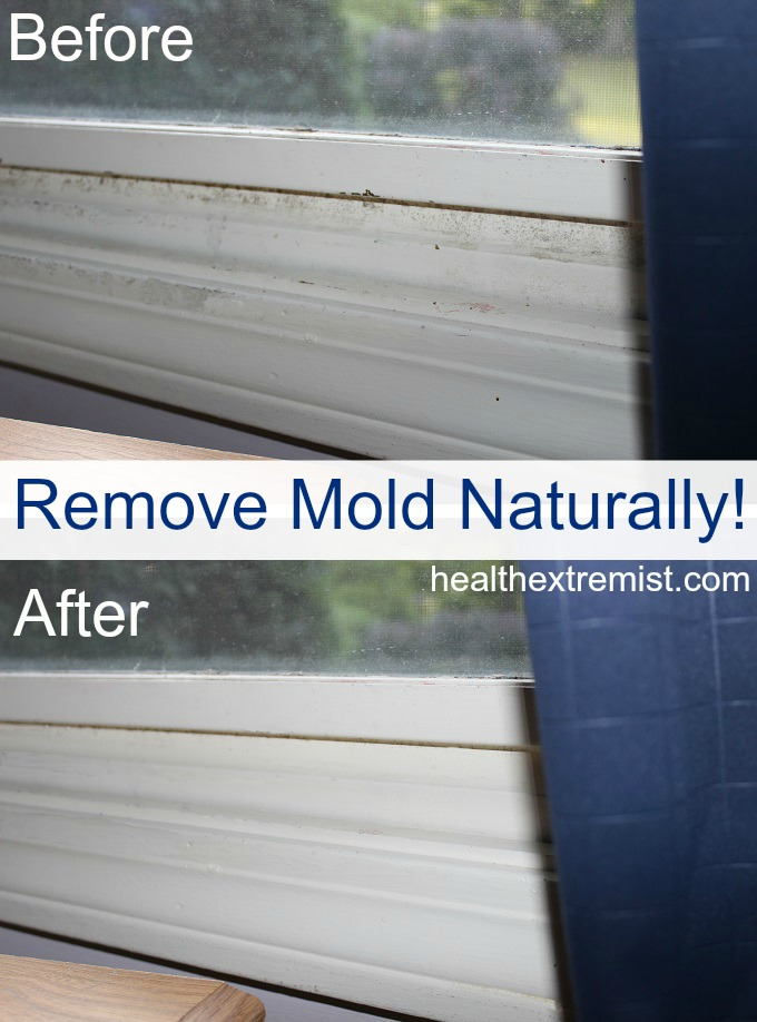 Get Rid Of Mould Naturally