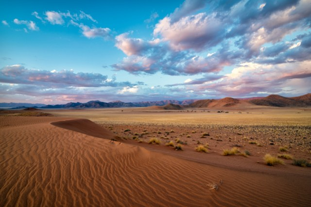 Namib Splendour