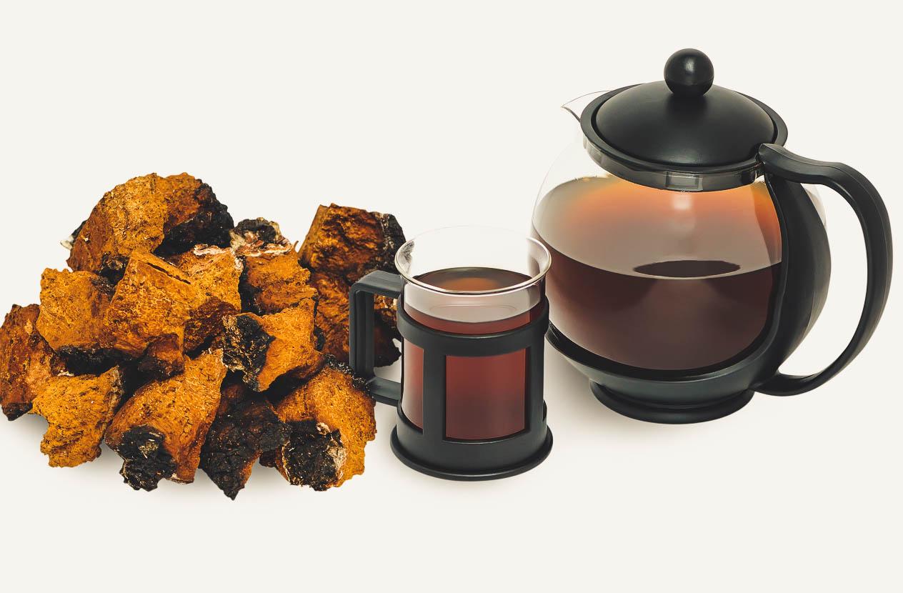 Image result for chaga tea