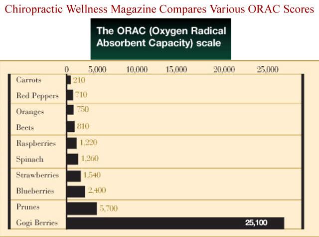 https://i0.wp.com/www.healthfulberry.com/images/goji-orac-chart.jpg