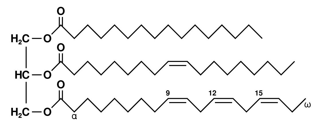 Medium Chain Triglycerides MCT