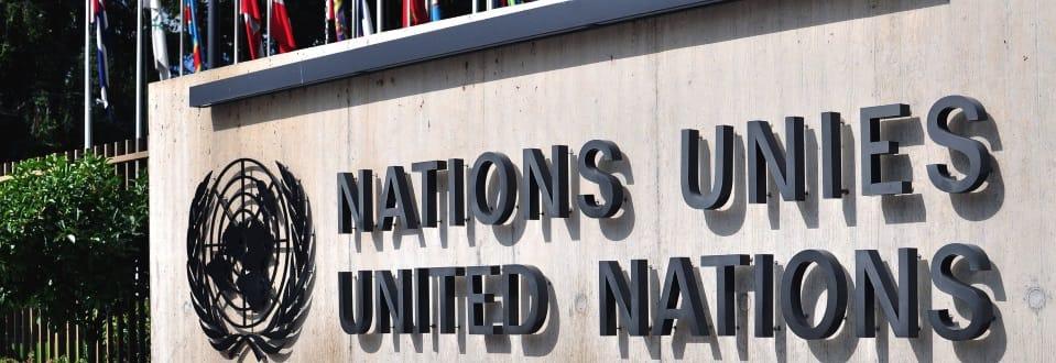 United Nations High Level panel