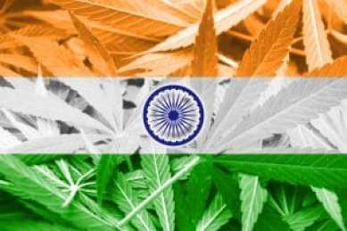 37089795 - india flag on cannabis background. drug policy. legalization of marijuana: Copyright: <a href='https://www.123rf.com/profile_promesaartstudio'>promesaartstudio / 123RF Stock Photo</a>