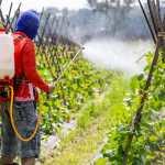 Pesticide. Copyright: ittipol / 123RF Stock Photo