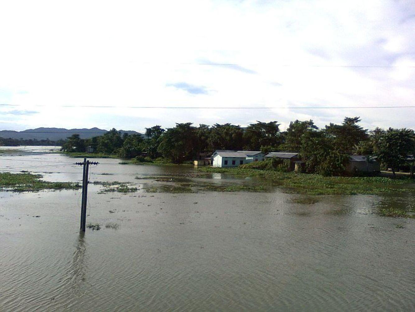 File:Brahmaputra Plains in Goalpara District of Assam 857.jpg