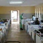 Ebola circulating in Indian bats