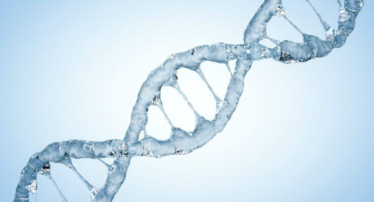 Genome Image ID: 84913114 (L)