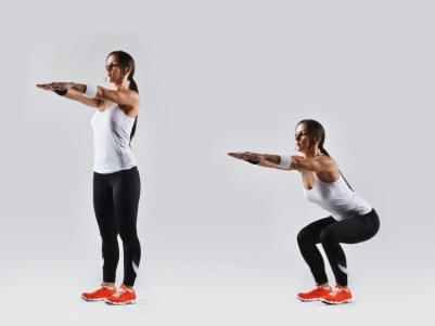 Image result for Basic Squat