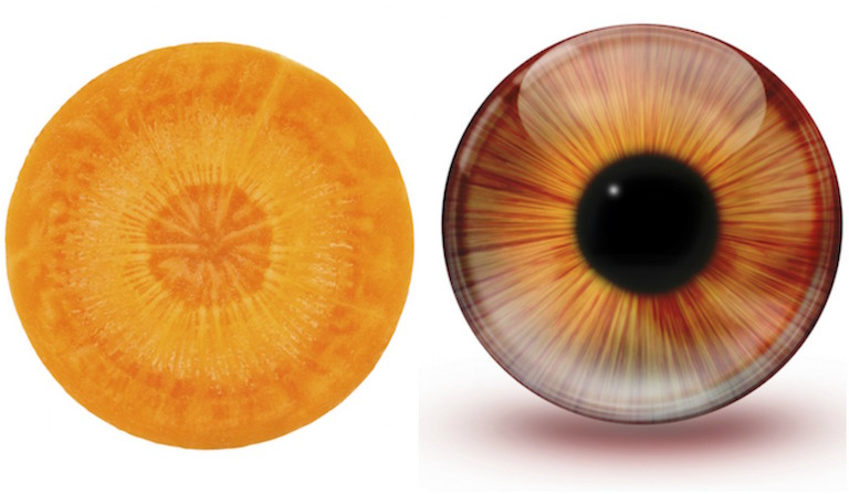 Carrot and eye, foods that look like the body part they're good for, by healthista