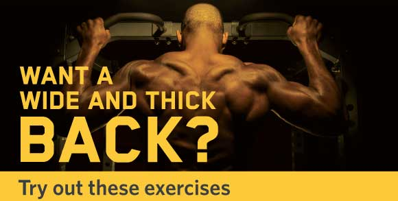 3 Exercise to build a massive back