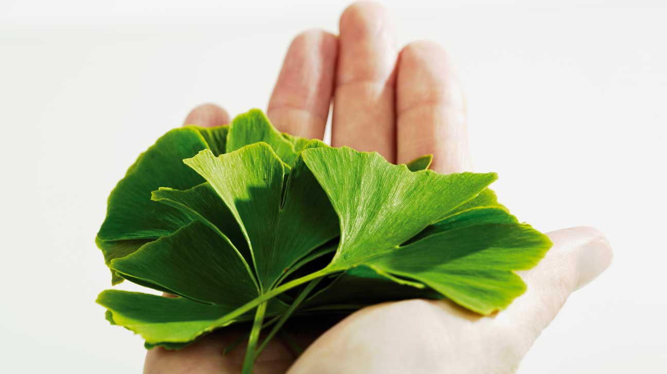 Ginkgo biloba and sex drive
