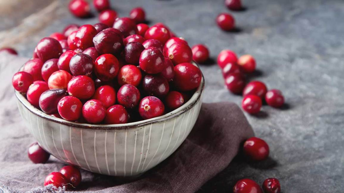 Cranberries 101: Nutrition Facts and Health Benefits