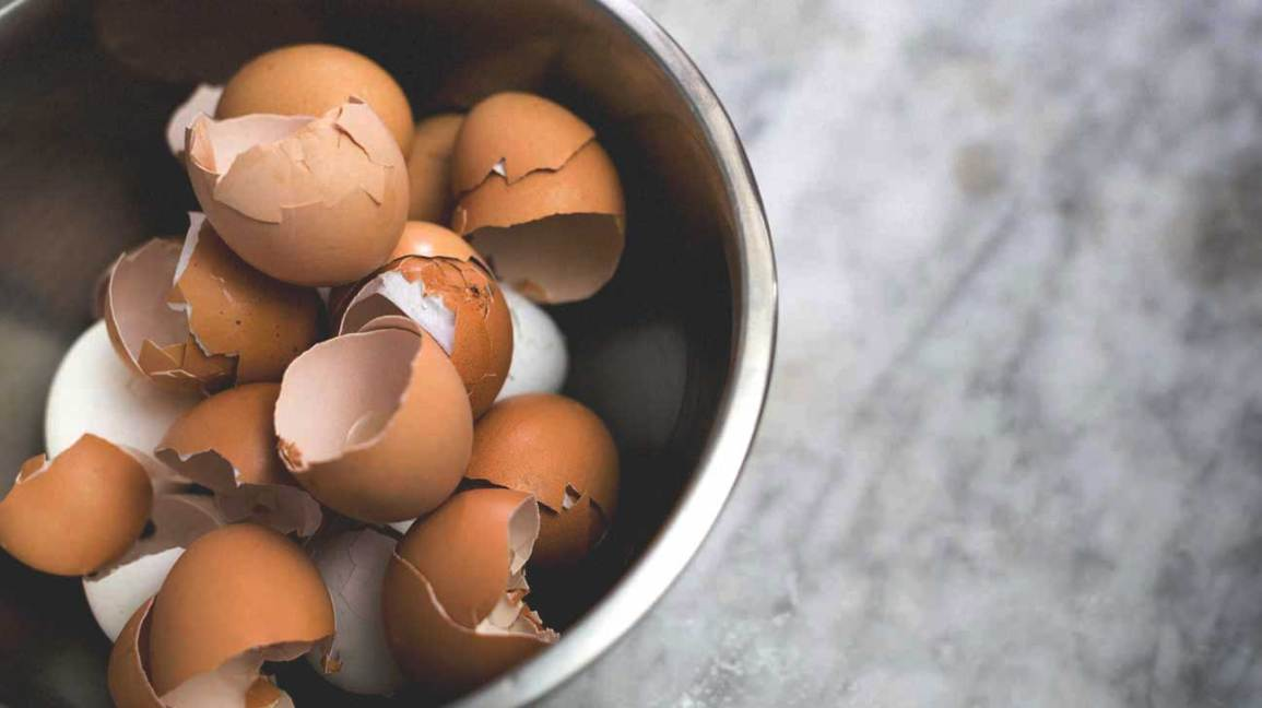 Eggshells in a Bowl