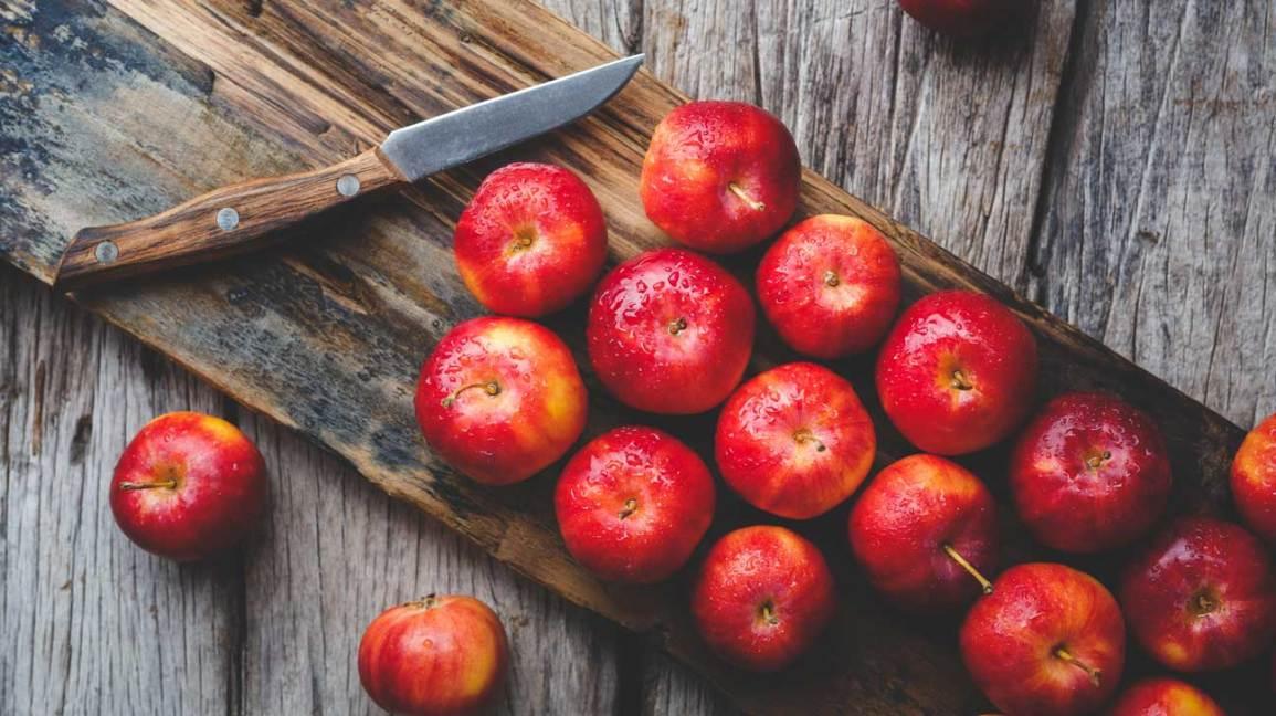 speech on apple fruit