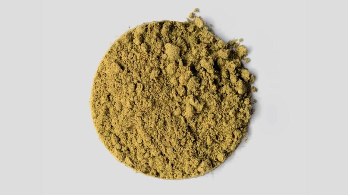 Hemp Protein Powder The Best Plant Based Protein