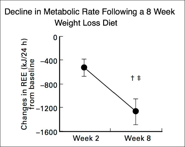How to Implement Calorie Cycling