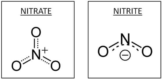 Molecular Structure of Nitrates and Nitrites