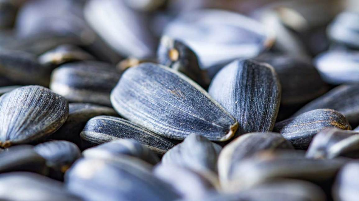 Sunflower Seeds: Nutrition, Health Benefits and How to Eat ...