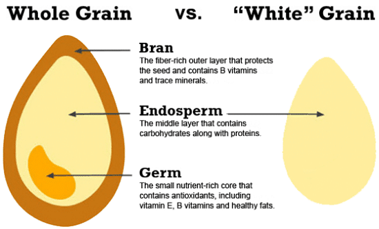 Whole vs. Refined Grains